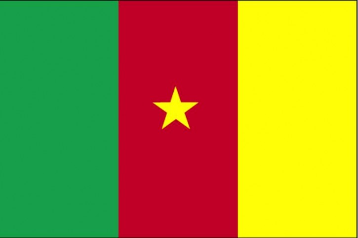 flag-of-cameroon_w725_h483
