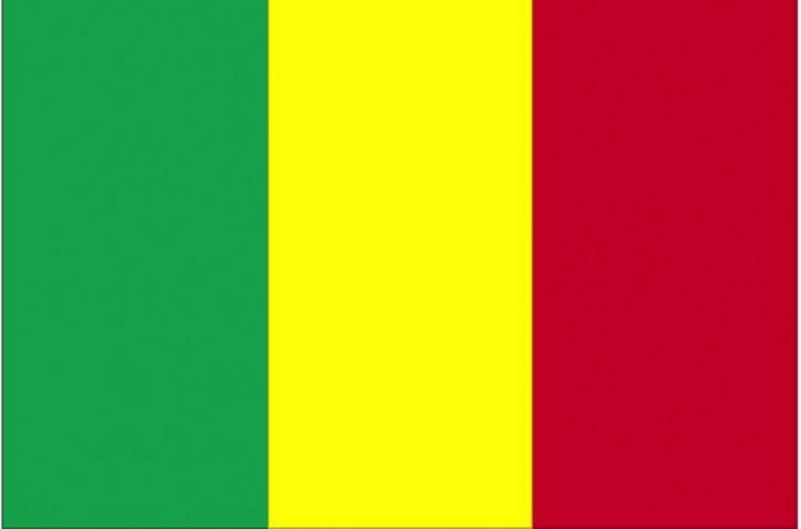 flag-of-mali_w725_h479
