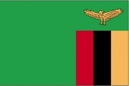 flag-of-zambia_w725_h481